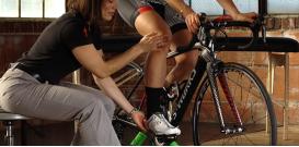 Советы по подбору велосипедов от компании Forward